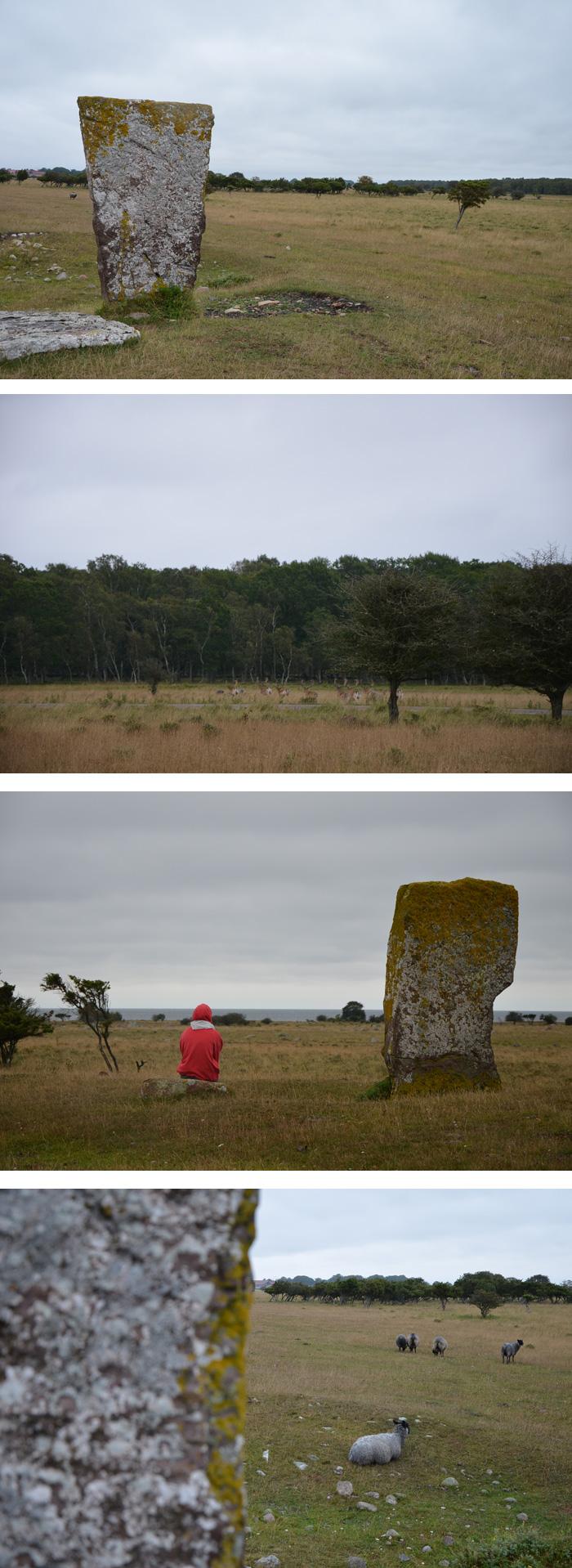 Öland - Ottenby : réserve naturelle et tombeaux