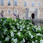 Vadstena - Voyage Suède