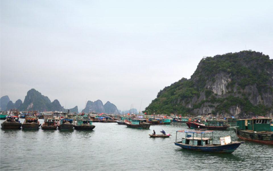 Croisière dans la Baie d'Along et la Baie de Bai Tu Long au Vietnam