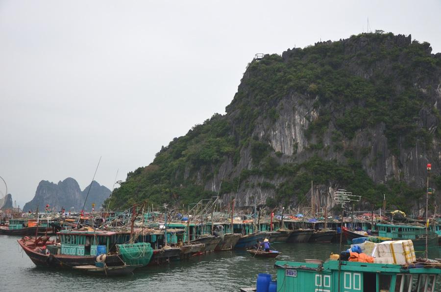 Croisière dans la Baie de Bai Tu Long - Port Van Don