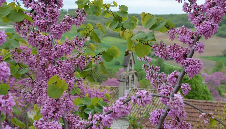 Lauzerte, un des plus beaux villages de France