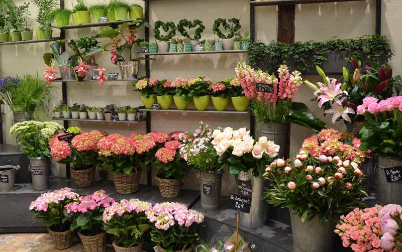Clesa, fleuriste à Lyon