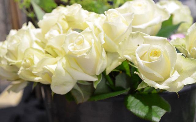 ✿ Le pouvoir des fleurs ✿ {Concours inside}