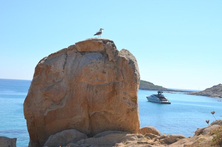 Côte d'Azur - Méditerranée - Cap Taillat