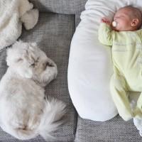 J'ai testé le coussin de maternité bio Naturna