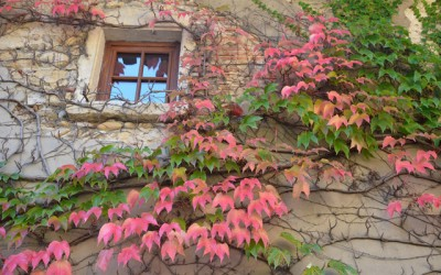 Pérouges à l'automne