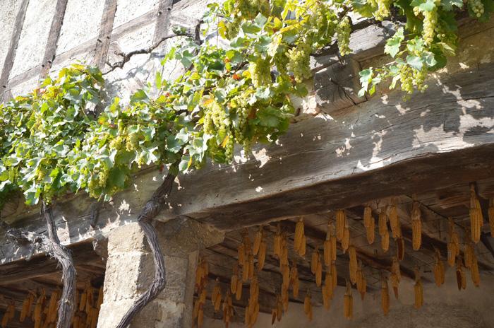 Visite de Pérouges à l'automne