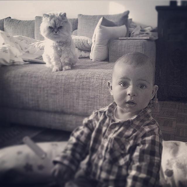 Noah et le chat