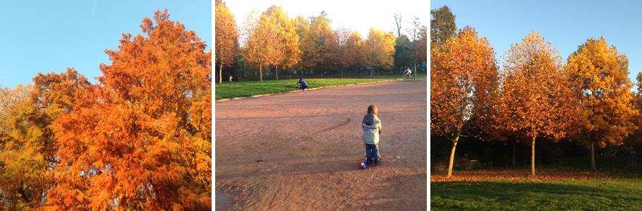 Balade d'automne au parc de la Tête d'Or