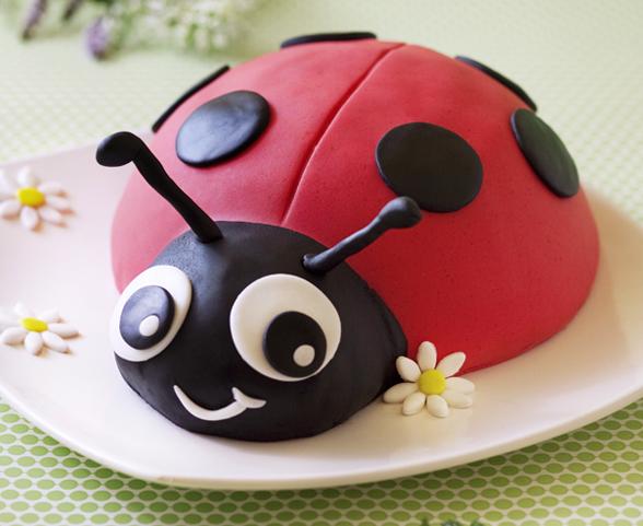 Gâteau anniversaire enfant cocinelle