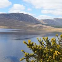 Slow tourisme : mon séjour nature sur la côte ouest de l'Irlande