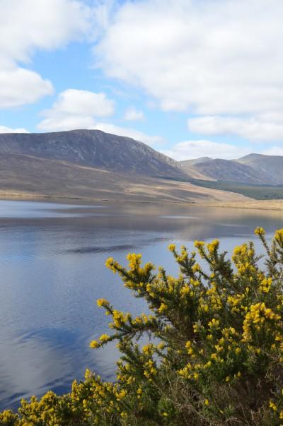 Mon séjour nature dans le comté de Mayo