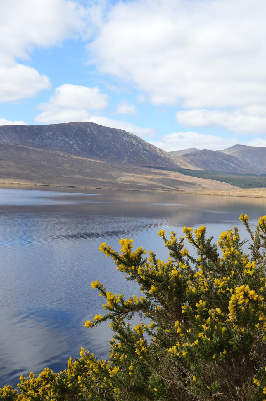 tourisme mon s 233 jour nature sur la c 244 te ouest de l irlande