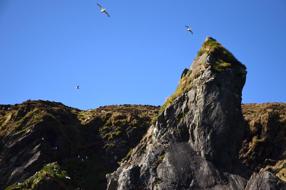 Les falaises de Clare Island