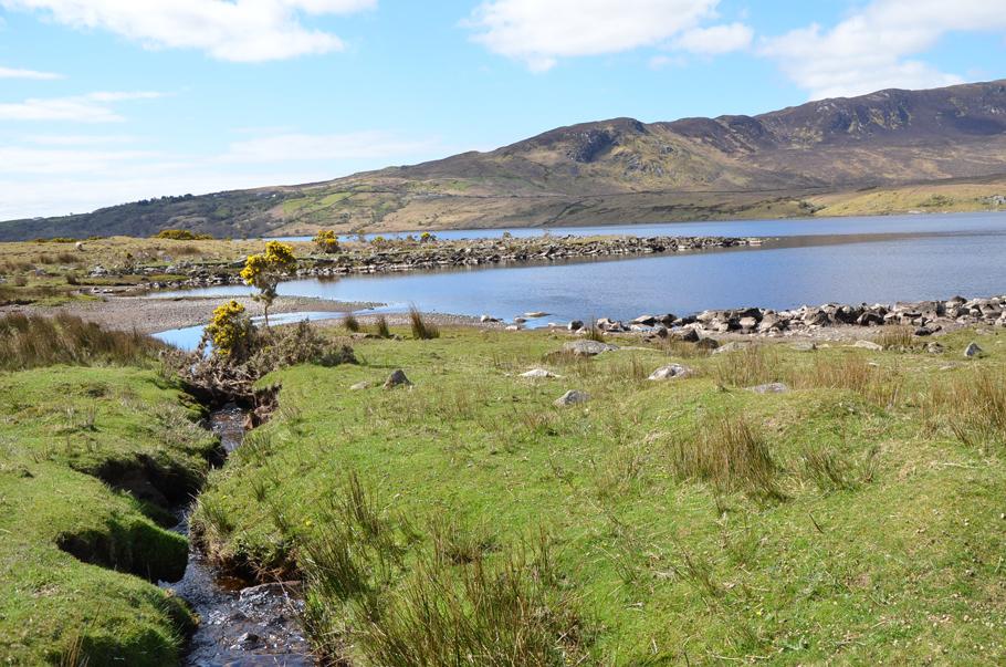 La nature irlandaise dans toute sa splendeur