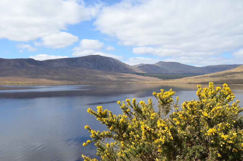 Tourisme Irlande : balade à vélo hors des sentiers battus