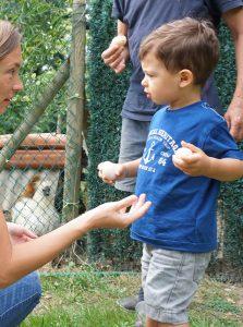Vacances à la campagne chez papi et mamie : aller chercher les oeufs au poulailler