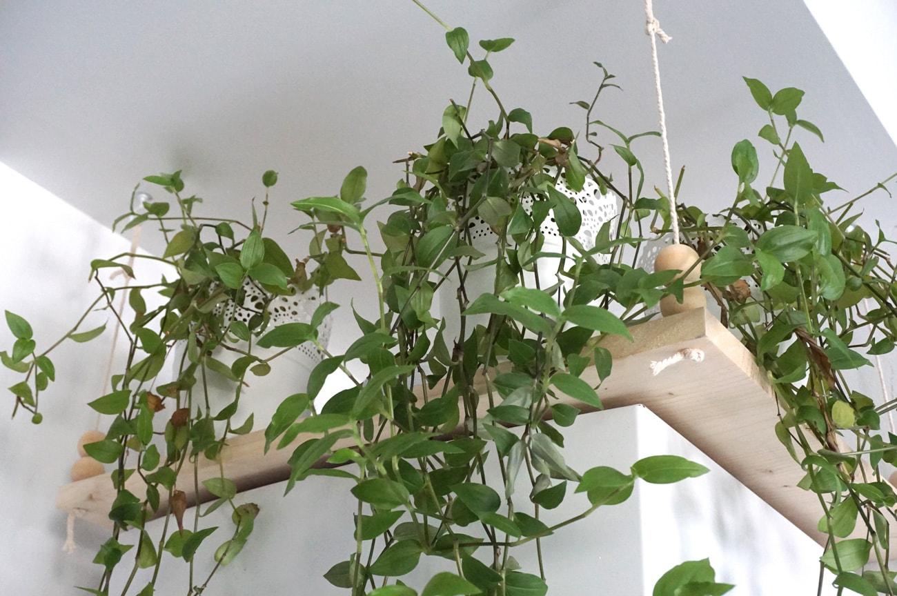 Comment cacher une chaudière dans une cuisine semi-ouverte ?