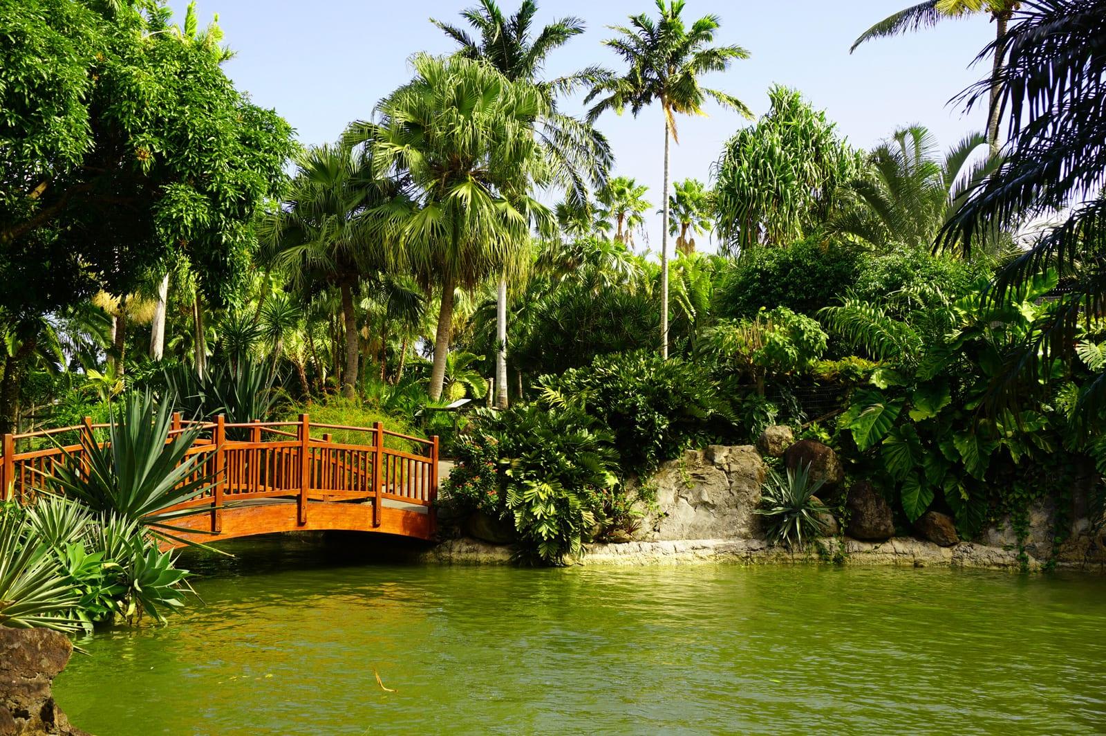 Que faire en Guadeloupe : le jardin botanique de Deshaies