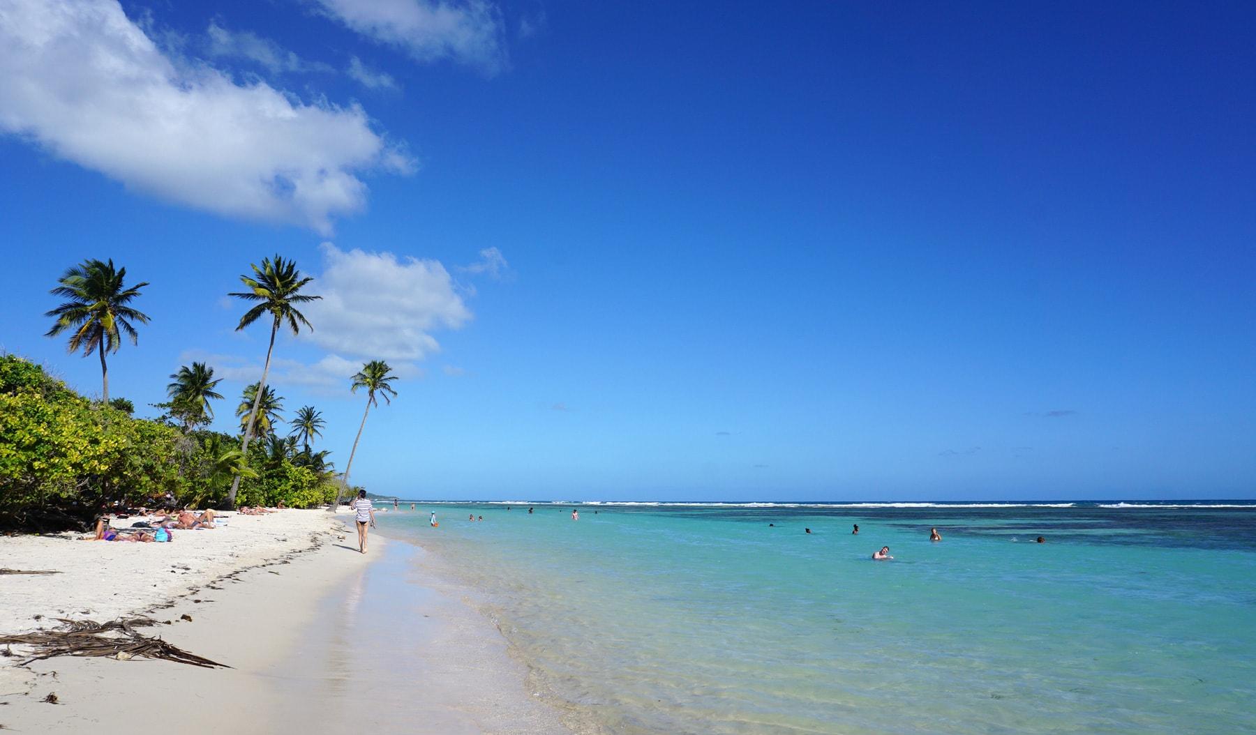 Voyage en famille en Guadeloupe : la plage de bois Jolan