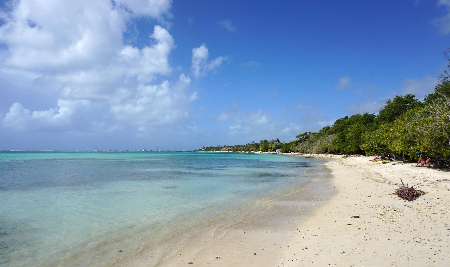 Guadeloupe plage saint francois