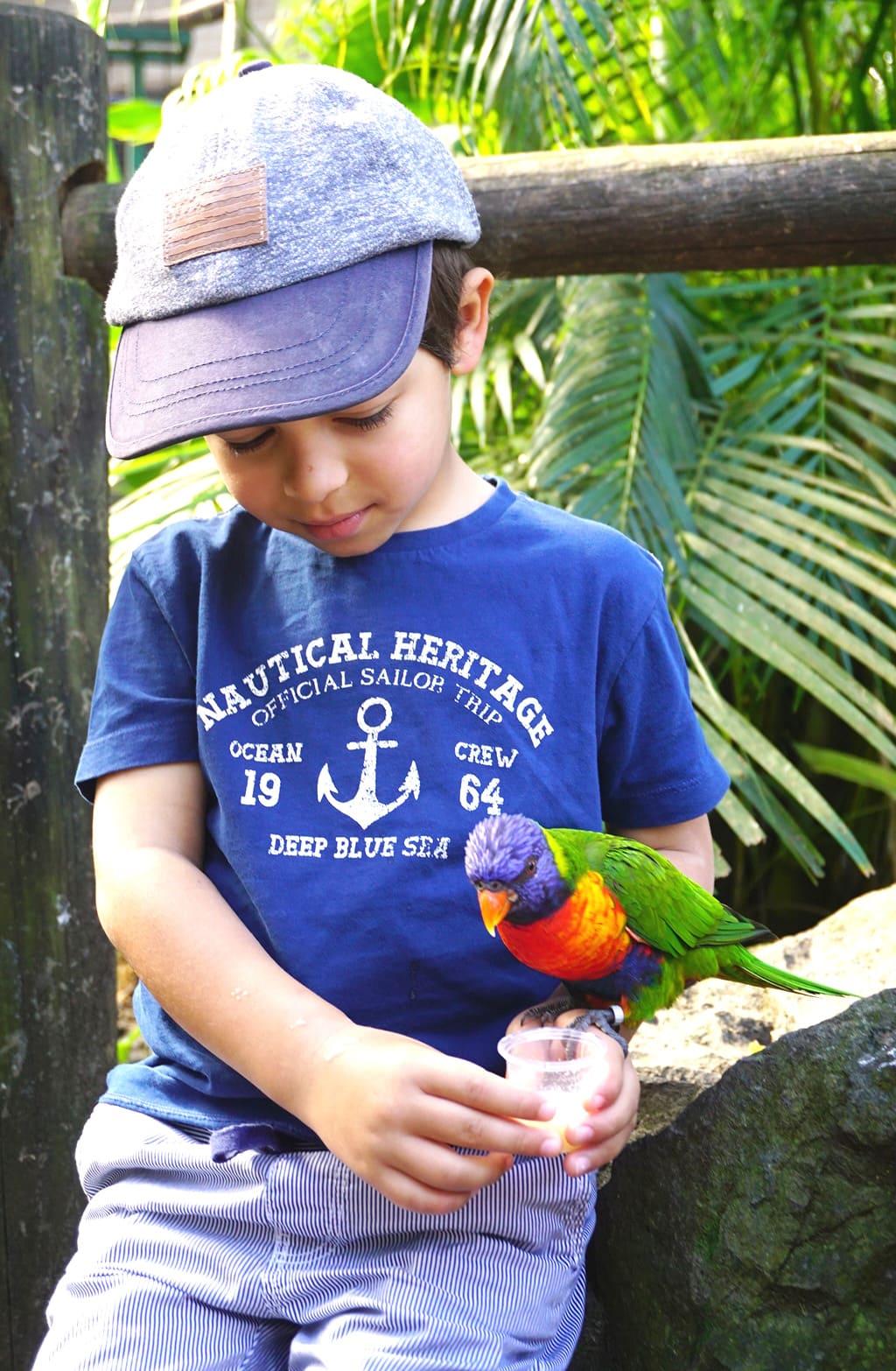 Que faire en Guadeloupe avec les enfants: le jardin botanique de Deshaies