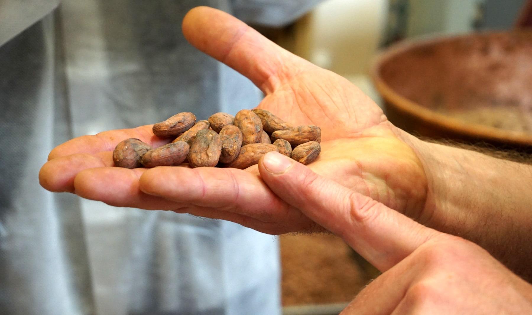 Chocolats Voisin : Maître Chocolatier de Lyon depuis 1897 - Label Entreprise du Patrimoine Vivant (Label EPV)