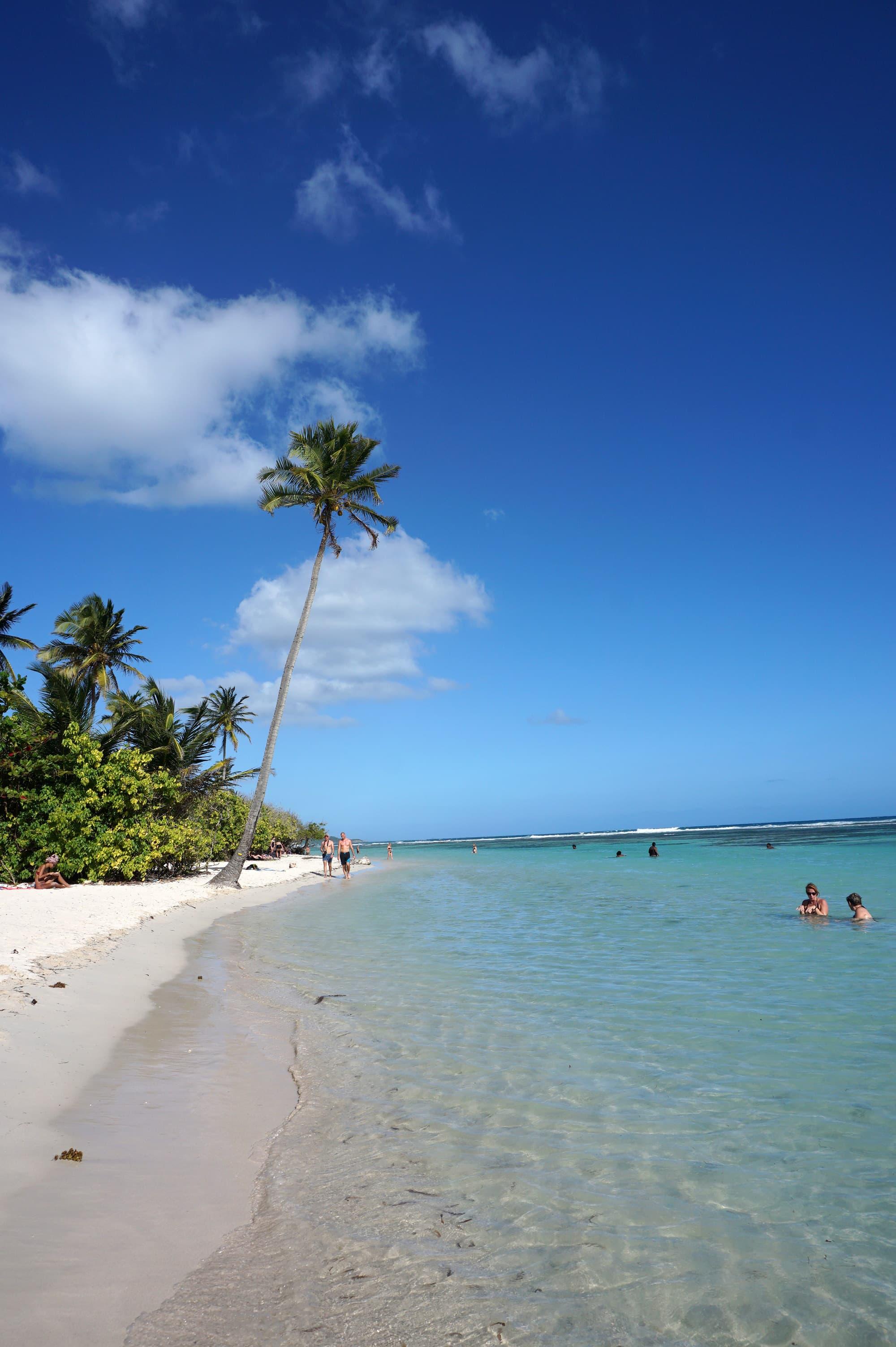 Belle plage en Guadeloupe : la plage de Bois Jolan