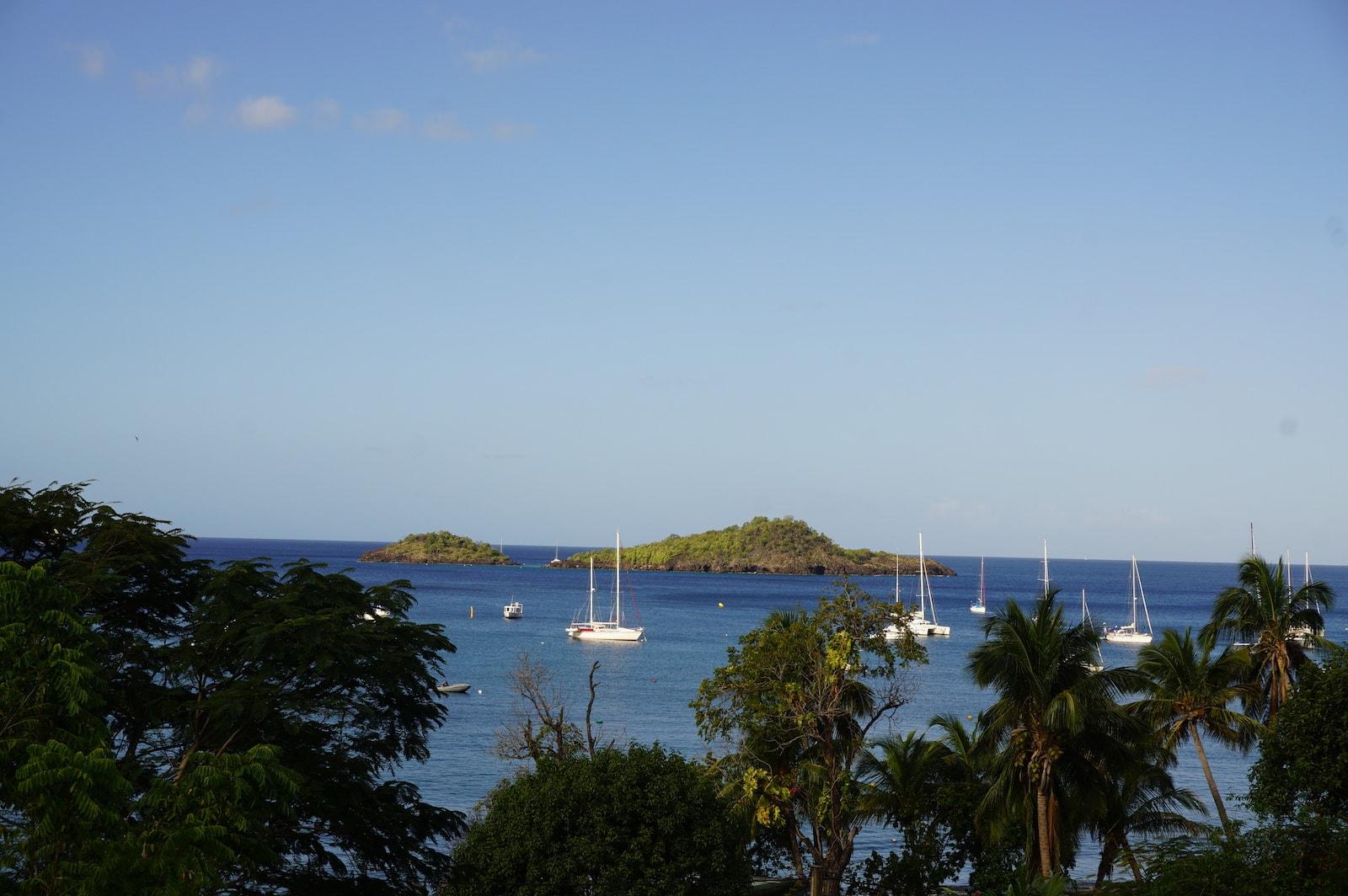 Les Ilets Pigeon à Malendure, spot de plongée en Guadeloupe