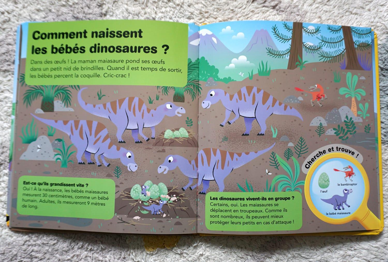 Livre enfant 3-6 ans : Mes premières questions-réponses