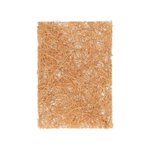 Eponge recurer fibre coco